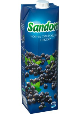 Nectar de casis 10x0.95L SANDORA