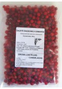 Grosella roja congelado 300gr
